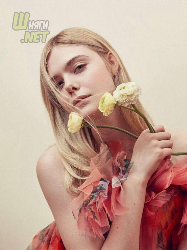 Потрясающая Эль Фаннинг elle fanning, a rainy dayin new york, mary shelley, the vanishing of sidney hall